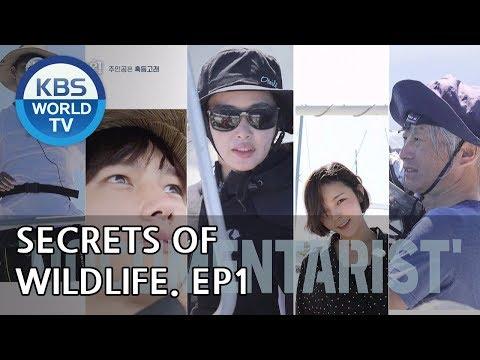 Secrets of Wildlife I 은밀하고 위대한 동물의 사생활 – Ep.1 [ENG/2018.12.05]