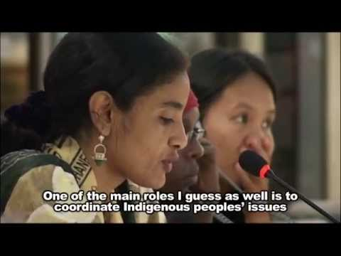 12.  United Nations Permanent Forum On Indigenous Issues