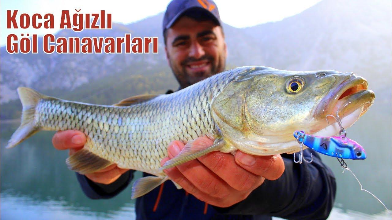 Koca Ağızlı Göl Balıkları Yakaladık / Huzur Verici Doğada LRF Avı