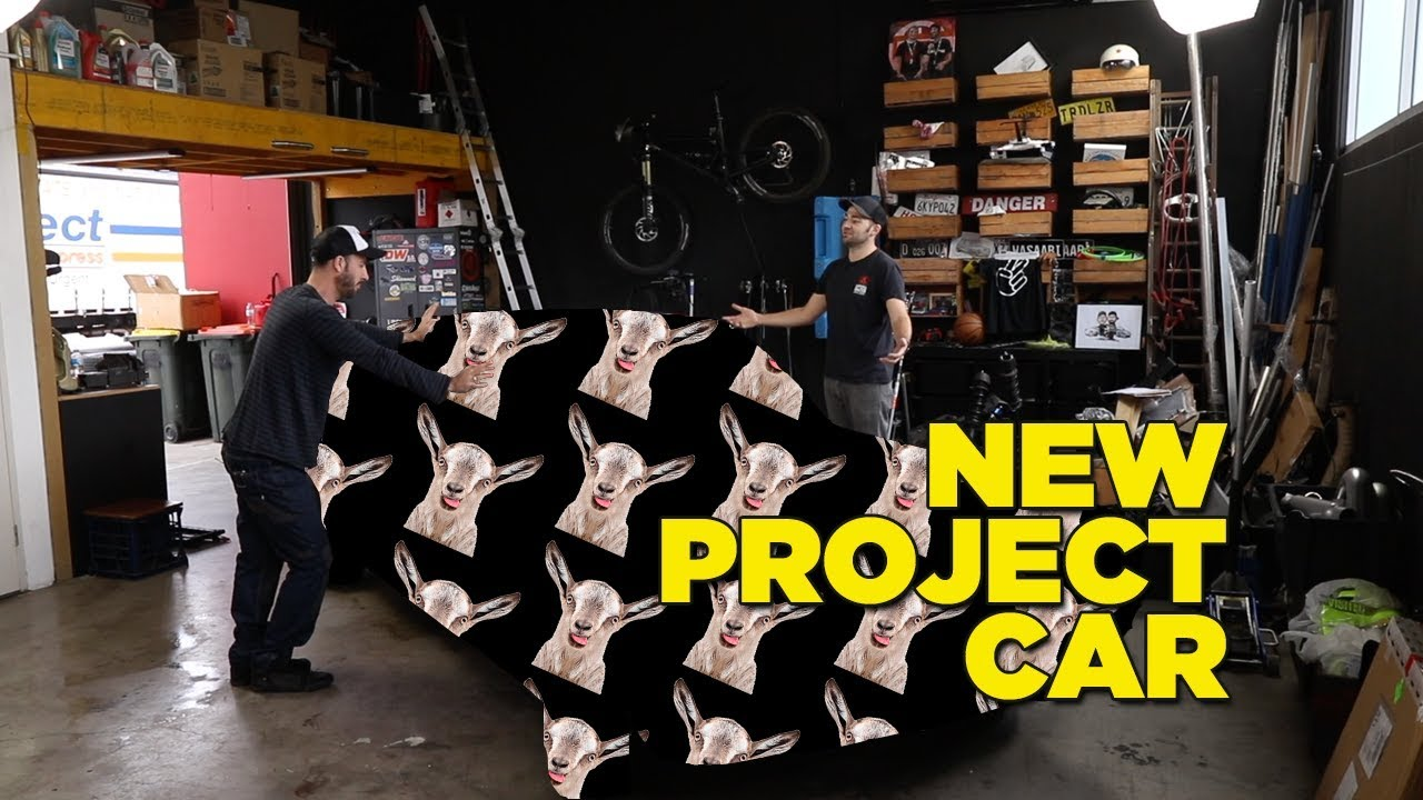 new-project-car-reveal