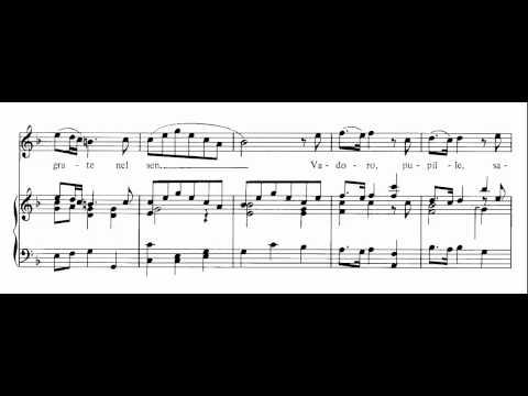 V'adoro Pupille (Giulio Cesare In Egitto - Händel) Score Animation