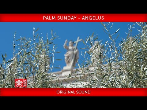 Pope Francis - Celebration of Palm Sunday - Angelus prayer 2018-03-25