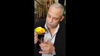 موسيقى قطرات الندى / تأليف وعزف هاني نديم allison goal