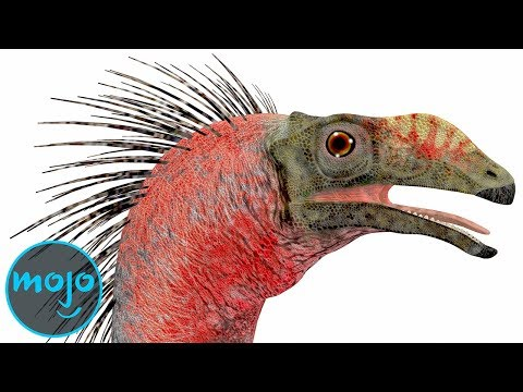 See these Awesome Dinosaurs You've Never Heard of!