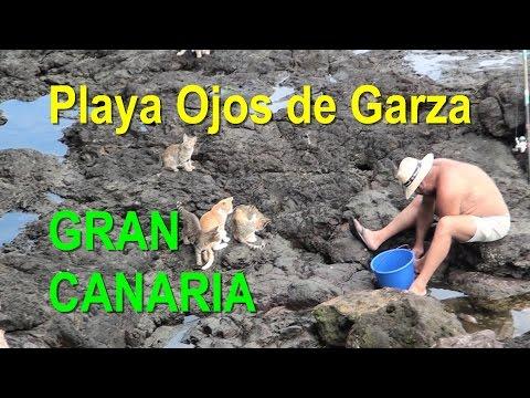 Playa Ojos de Garza - Gran Canaria