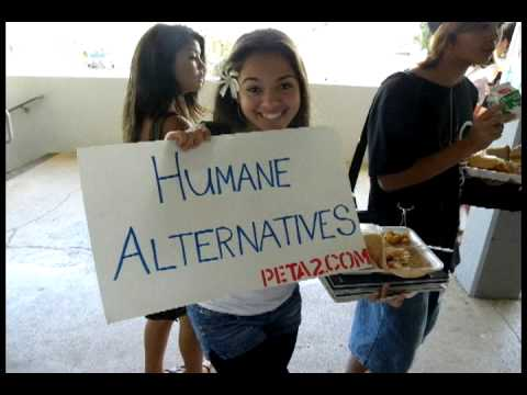 Kalaheo High School- Cut out dissection 2010 campaign