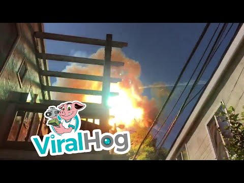 Mylar Balloons and Power Lines Don't Mix || ViralHog