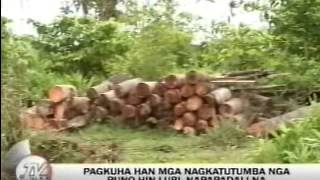 TV Patrol Tacloban - March 23, 2015