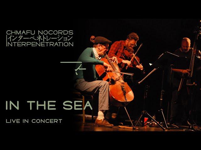 In The Sea @ Interpenetration 1.8.2