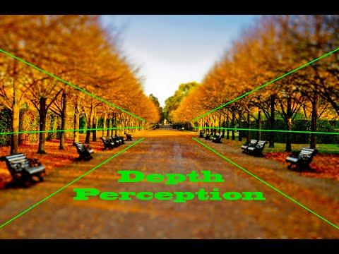 Stereopsis [ Sub - Eng ] -  Binocular Vision part 4