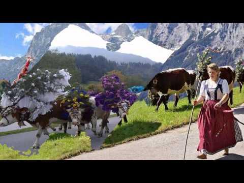 The Tirol Cow Festival - Austria (HD1080p)