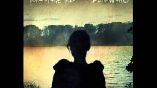 Porcupine Tree Halo