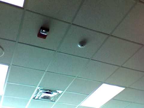 Charlestown High School Fire Alarm Youtube