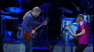 TEDESCHI TRUCKS BAND -The Sky is Crying