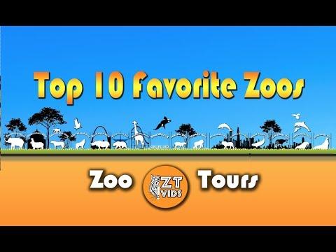 My Top 10 Favorite Zoos