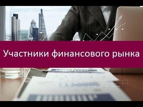 Участники финансового рынка. Описание