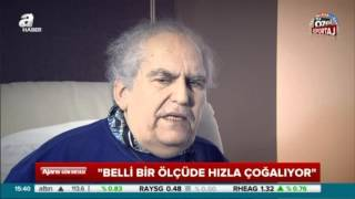 Prof. Dr. Erkan Topuz: Anne sütü kanserin ilacı -  A HABER