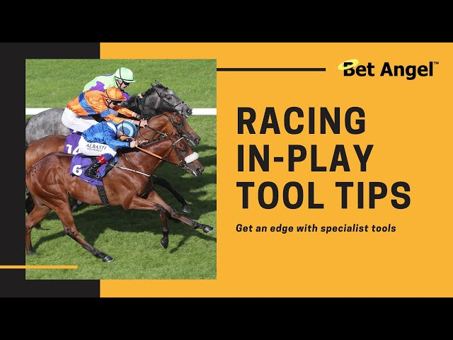 Betfair InPlay Horse Racing trading | Take it to another level with Bet Angel