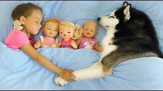 София и Забавная история про Любимые Игрушки, Куклы и Собаку