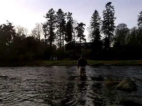 Fly Fishing Cargill Beat On The Tay