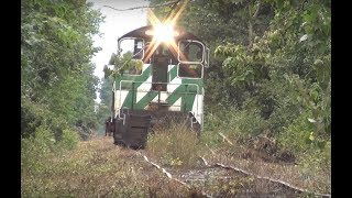 PREX 107 NW2 switcher and Husqvarna chainsaw Out of Service track Railroading ND&W Railroad