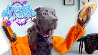 We Invented Working Robotic Arms for Dogs | CRAZY SOLUTIONS TO SMALL PROBLEMS