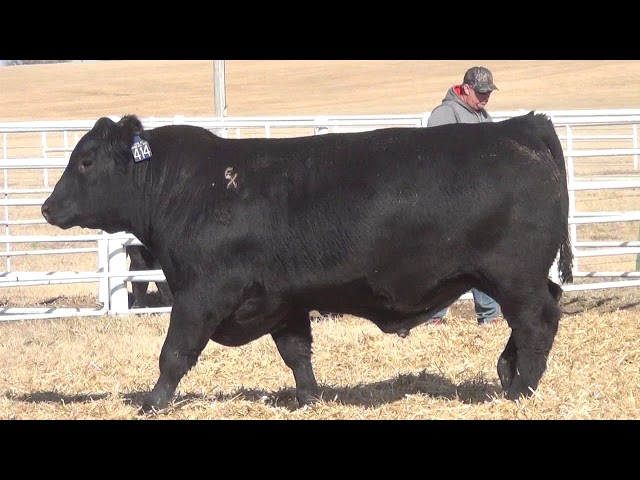 Express Ranches Lot 414
