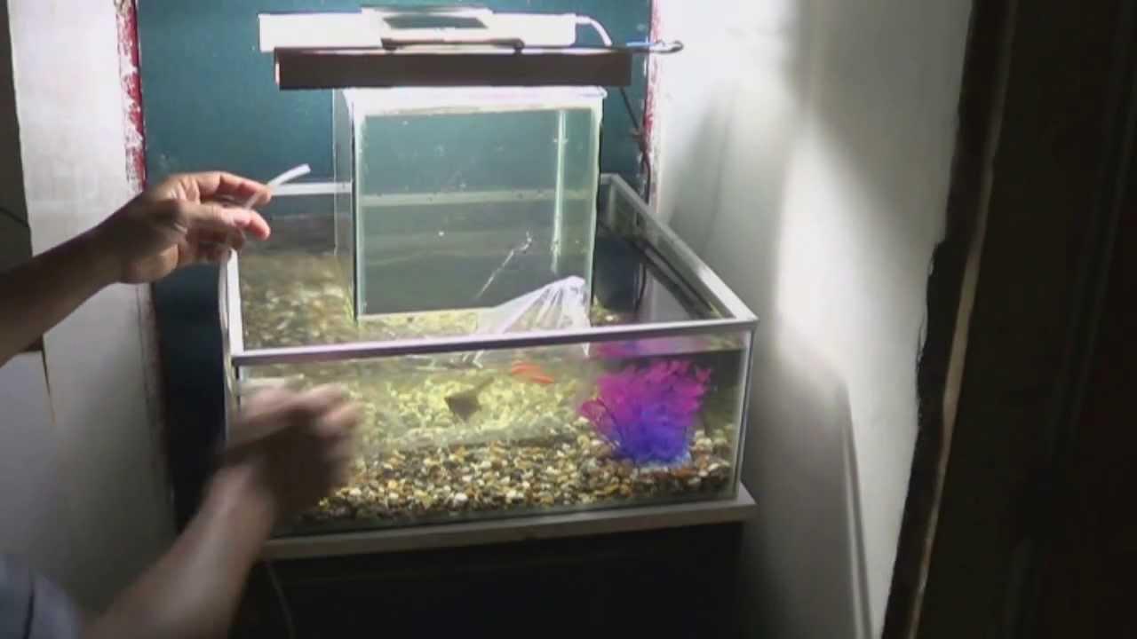 instalación acuario invertido central 360° grados | open ...