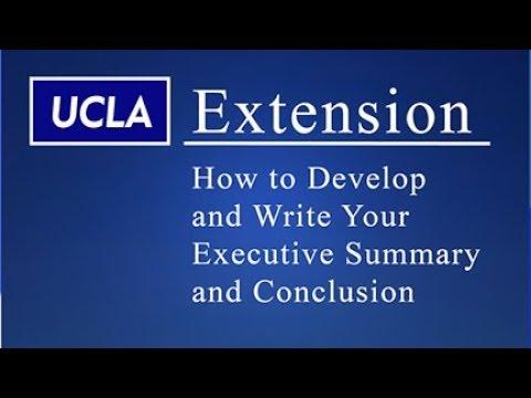 Executive Summary & Conclusion