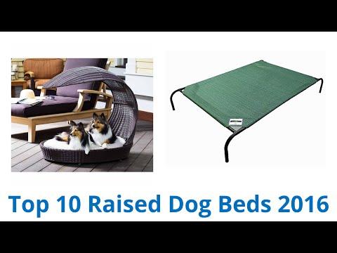 10-best-raised-dog-beds-2016