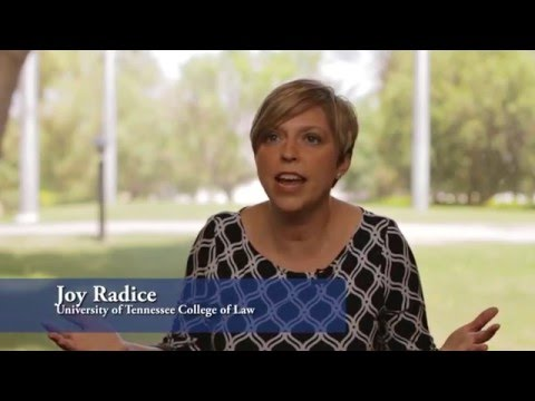 Thinking and Acting Like Lawyers: Reflection-in-Action in the Law School