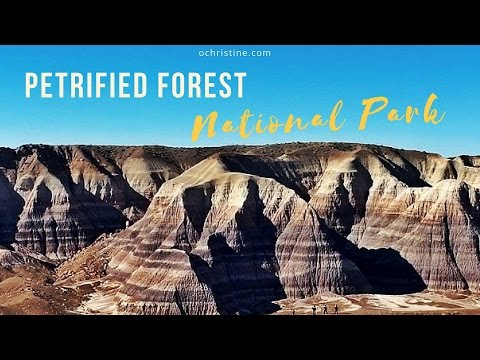 Day Trip to Arizona's Petrified Forest National Park & Painted Desert | O. Christine Travel Blog