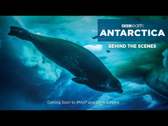 BBC Earth Behind the Scenes - Filming for IMAX®/Giant Screens - ANTARCTICA: INTO THE UNKNOWN