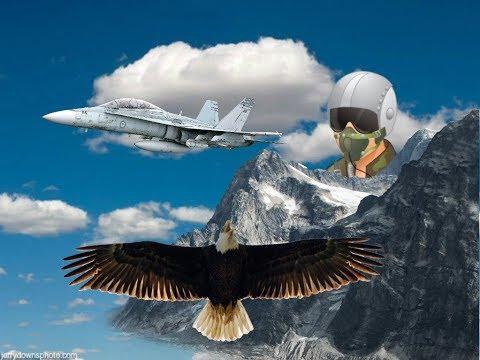 CF-18 Hornet Fighter Jet Flyby