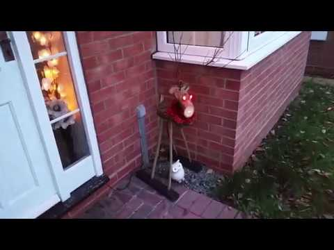 Xmas DIY wooden reindeer with colour changing LED eyes & red nose