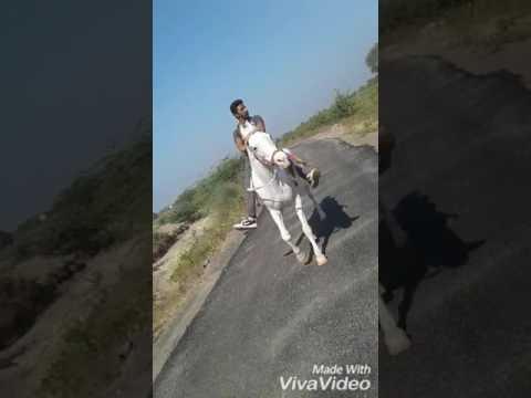Khuman Raj