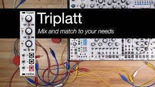 Triplatt Overview