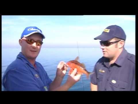 Mullet & Pt Phillip Bay - HLS 2003-11