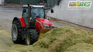Massey Ferguson 8660 on Silage Pit | Motor Sound | Under The Rain | 4K