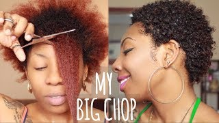 The Big Chop + Why I Cut My 4A Hair (Healthy Hair Journey) | NaturallyNellzy