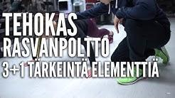 Tehokas rasvanpoltto - 3+1 tärkeintä treenielementtiä | Personal Trainer Timo Haikarainen