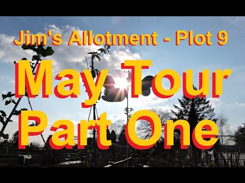 Jim's Allotment - Plot 9 - May Tour Part 1 - Chickpeas, Cucumbers, Fruit trees and Broccoli