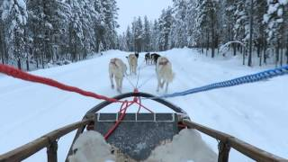 Husky safari at Guest House Husky Ivalo, Finland, in November 2015.