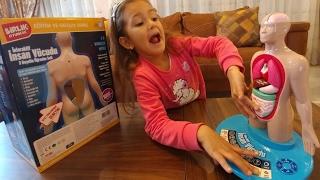 İnsan vücudu öğrenim seti, çok eğlenceli çok eğitici biz çok beğendik, çocuk videosu