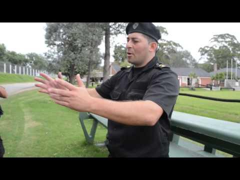 policias de cuatro patas