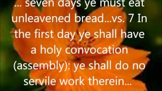 The Holy Days - Passover & Feast Of Unleavened Bread