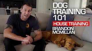 Dog Training 101: House Training | Brandon McMillan