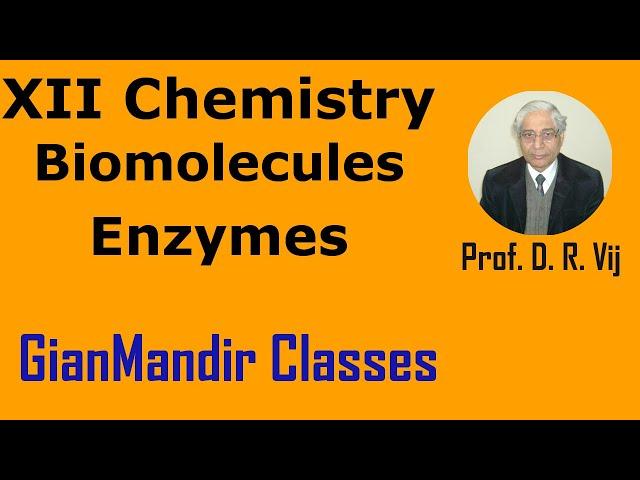 XII Chemistry | Biomolecules | Enzymes by Gourav Sir