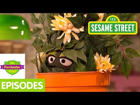 Furchester Hotel: Furgus Cares for his New Plant (Full Episode)