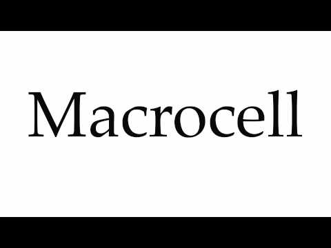 How to Pronounce Macrocell